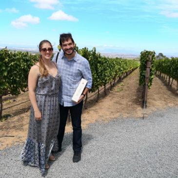 Winelands Tour